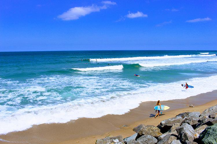 océan et surfeurs