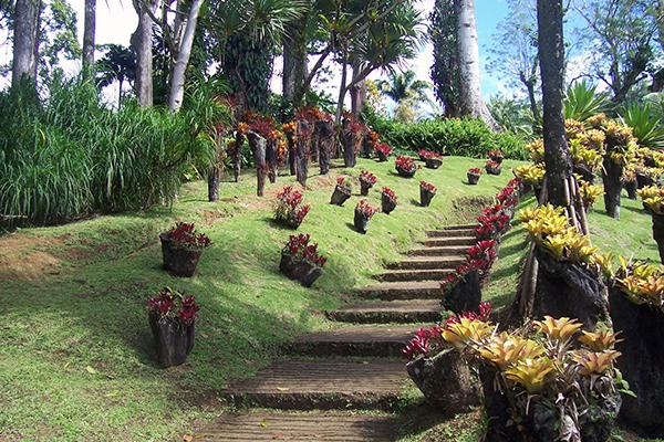 jardin_de_balata