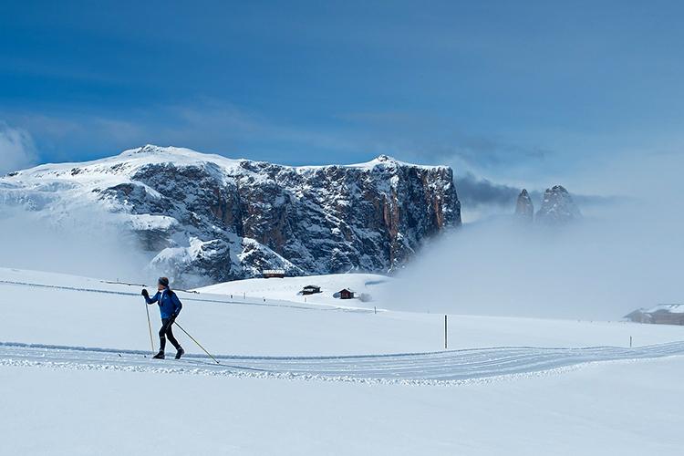 skieur de fond paysage enneigé
