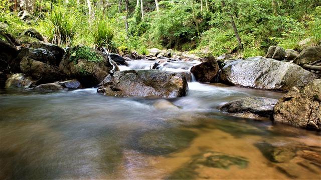 rivière du parc naturel du montseny en catalogne
